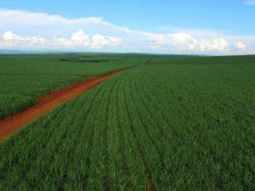 Rural à Venda
